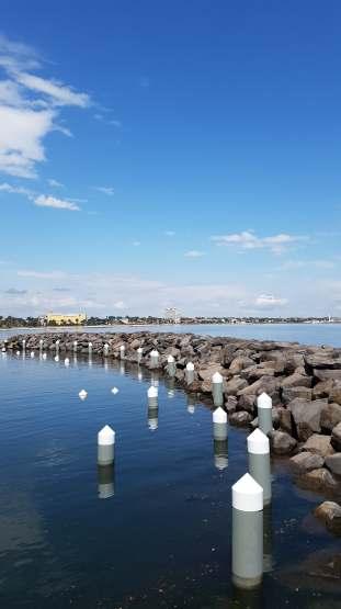 Pier Views
